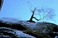 drabskesvetnicky(xi-2010)31.jpg