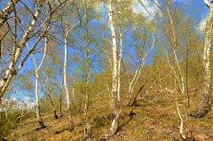 doubravka(iv-2011)55.jpg