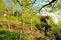 lipskahora(iv-2011)13.jpg
