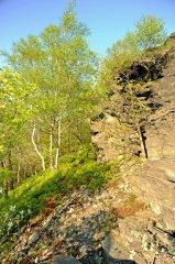 lipskahora(iv-2011)20.jpg