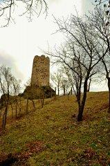 vlastislav(iiv-2011)3.jpg