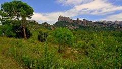 Montserrat05.JPG
