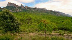 Montserrat09.JPG