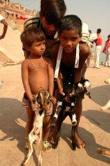 Indie142.JPG