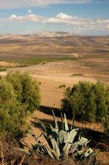 Maroko025.JPG