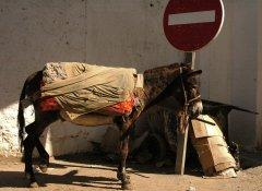 Maroko048.JPG