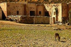 Maroko140.JPG