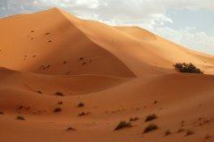 Maroko206.JPG