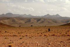 Maroko273.JPG