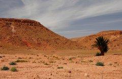 Maroko297.JPG