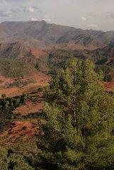 Maroko324.JPG