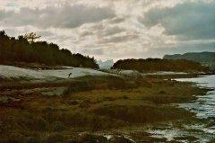 15Tysfjord6.jpg